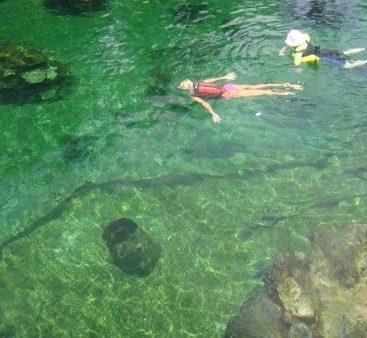 Scuba Diving - Carey takes a scuba diving lesson.