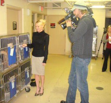 Carey gives animal shelter update - Local 4 news with reporter Lauren Podell interviews Carey Torrice to get the scoop on the animal shelter.